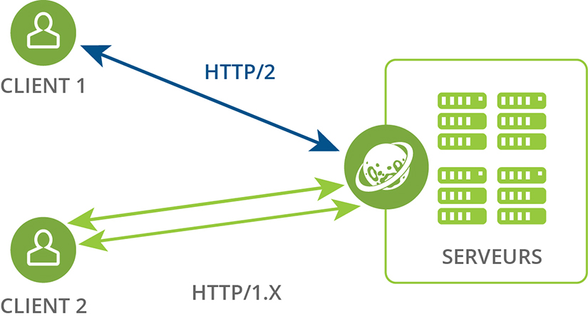 HTTP2 Mutiple sockets ryle software